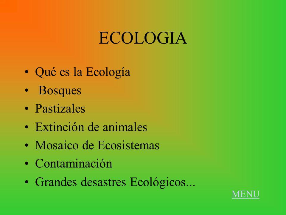 ECOLOGIA Qué es la Ecología Bosques Pastizales Extinción de animales Mosaico de Ecosistemas Contaminación Grandes desastres Ecológicos... MENU