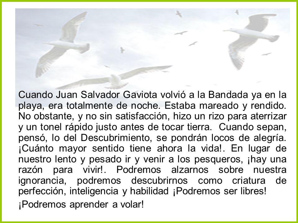 Cuando Juan Salvador Gaviota volvió a la Bandada ya en la playa, era totalmente de noche. Estaba mareado y rendido. No obstante, y no sin satisfacción