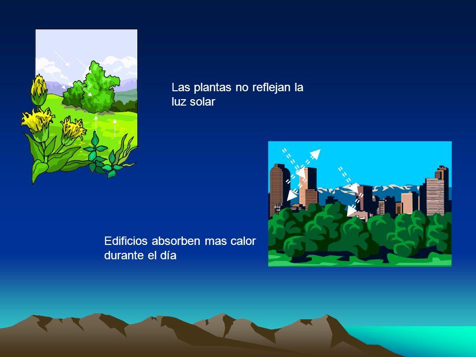 Las plantas no reflejan la luz solar Edificios absorben mas calor durante el día
