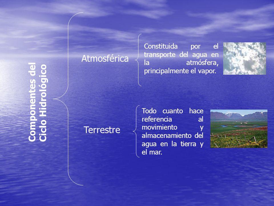 Componentes del Ciclo Hidrológico Atmosférica Terrestre Constituida por el transporte del agua en la atmósfera, principalmente el vapor. Todo cuanto h