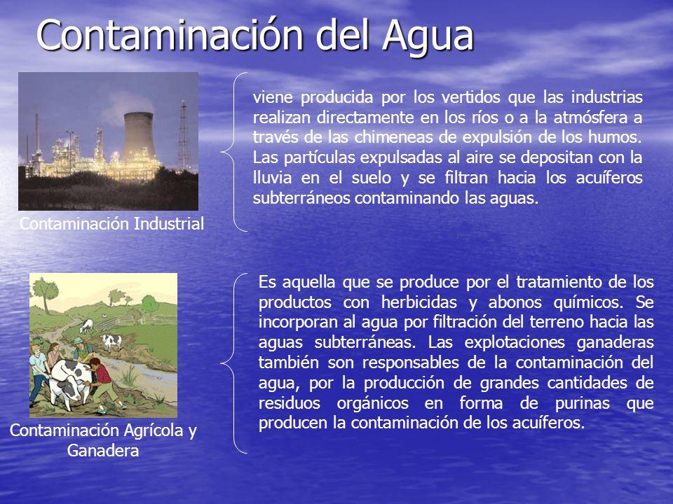 Contaminación del Agua Contaminación Industrial Contaminación Agrícola y Ganadera viene producida por los vertidos que las industrias realizan directa
