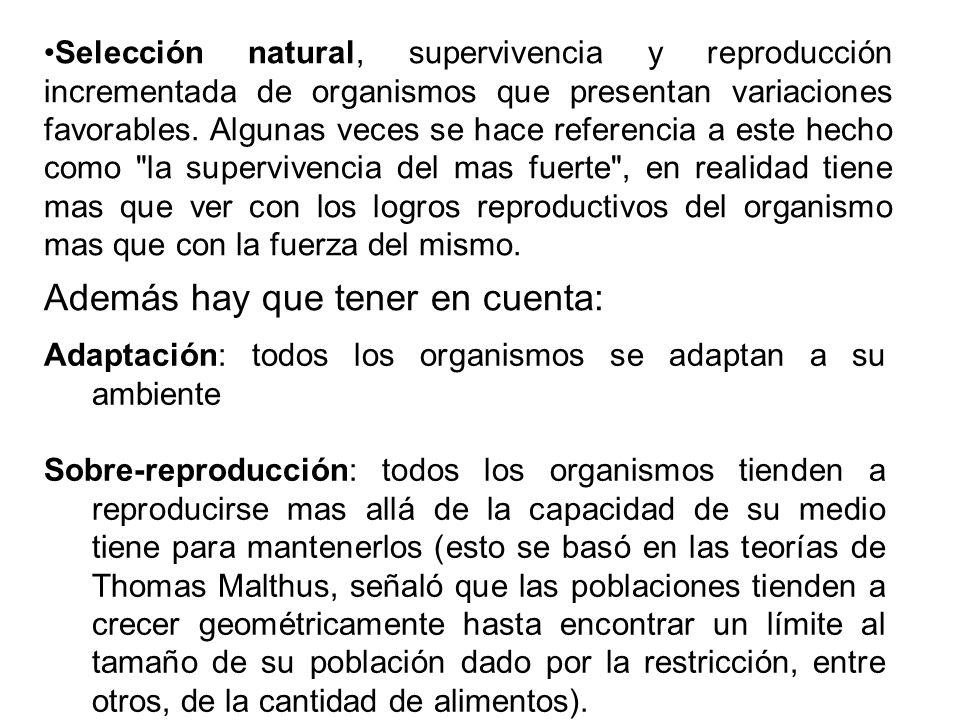 Además hay que tener en cuenta: Adaptación: todos los organismos se adaptan a su ambiente Sobre-reproducción: todos los organismos tienden a reproduci