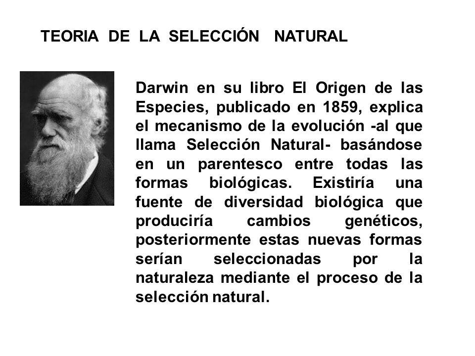 Darwin en su libro El Origen de las Especies, publicado en 1859, explica el mecanismo de la evolución -al que llama Selección Natural- basándose en un