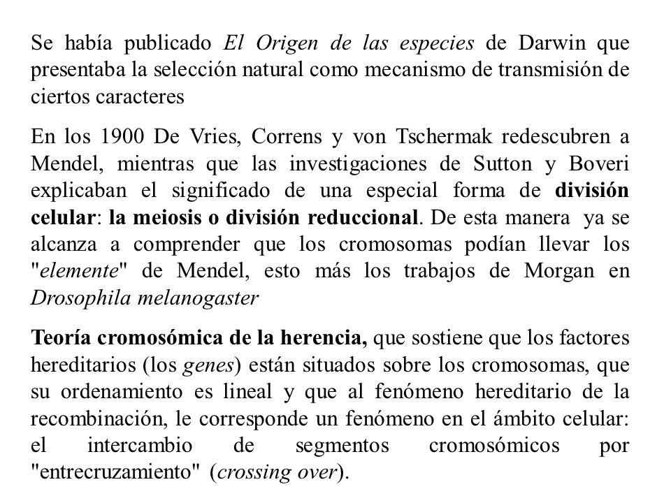 Se había publicado El Origen de las especies de Darwin que presentaba la selección natural como mecanismo de transmisión de ciertos caracteres En los