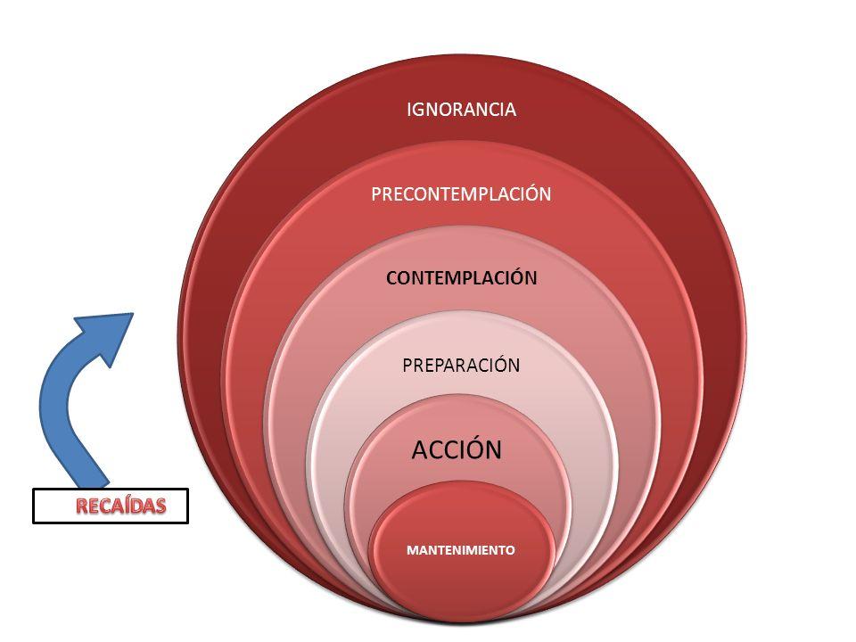 IGNORANCIA PRECONTEMPLACIÓN CONTEMPLACIÓN PREPARACIÓN ACCIÓN MANTENIMIENTO