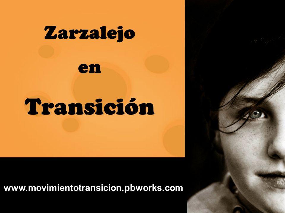 ZARZALEJO EN TRANSICIÓN www.movimientotransicion.pbworks.com Zarzalejo en Transición