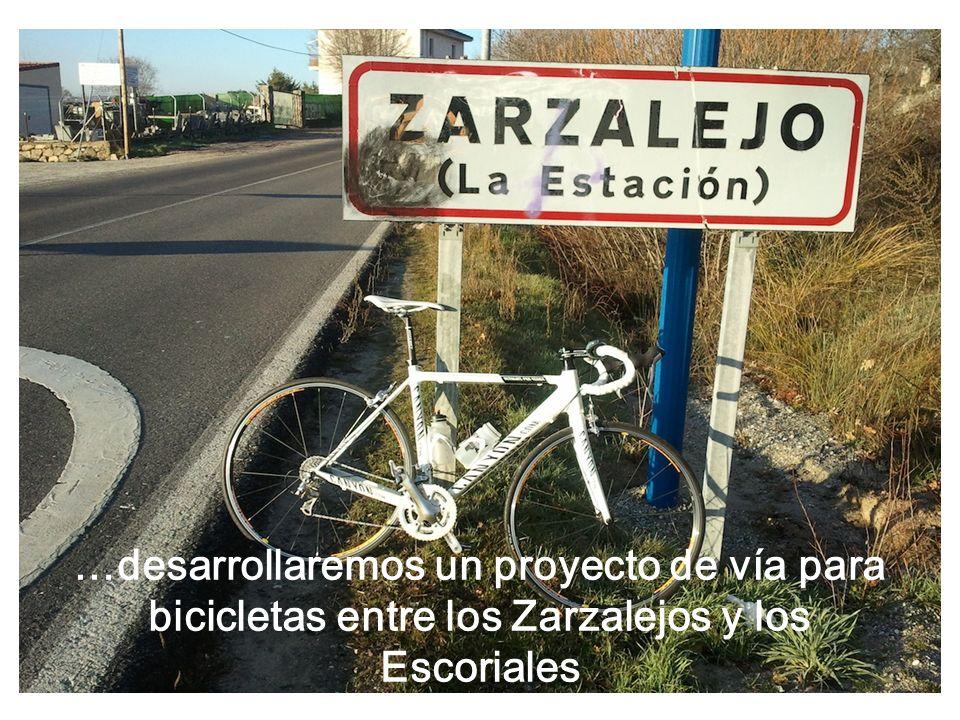 …desarrollaremos un proyecto de vía para bicicletas entre los Zarzalejos y los Escoriales
