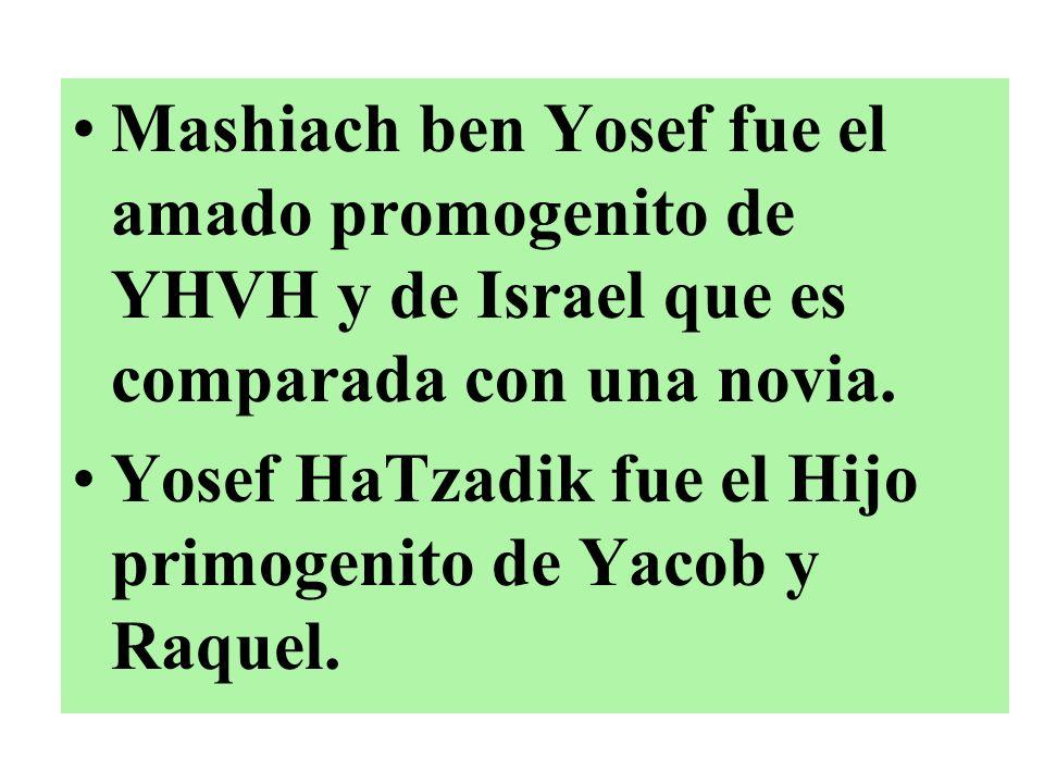 Mashiach ben Yosef fue el amado promogenito de YHVH y de Israel que es comparada con una novia. Yosef HaTzadik fue el Hijo primogenito de Yacob y Raqu
