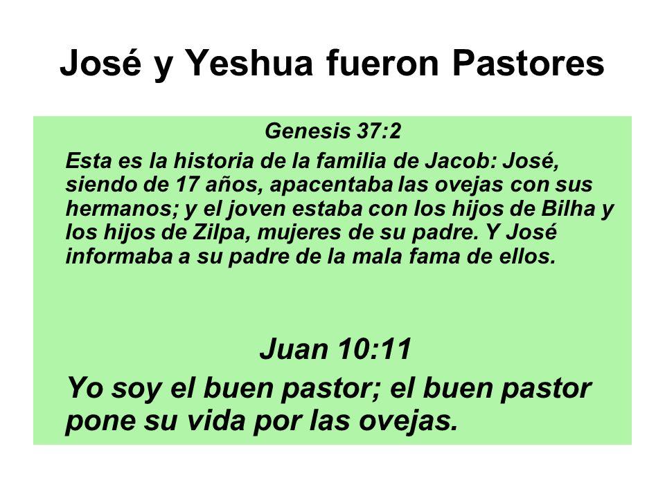 José y Yeshua fueron Pastores Genesis 37:2 Esta es la historia de la familia de Jacob: José, siendo de 17 años, apacentaba las ovejas con sus hermanos