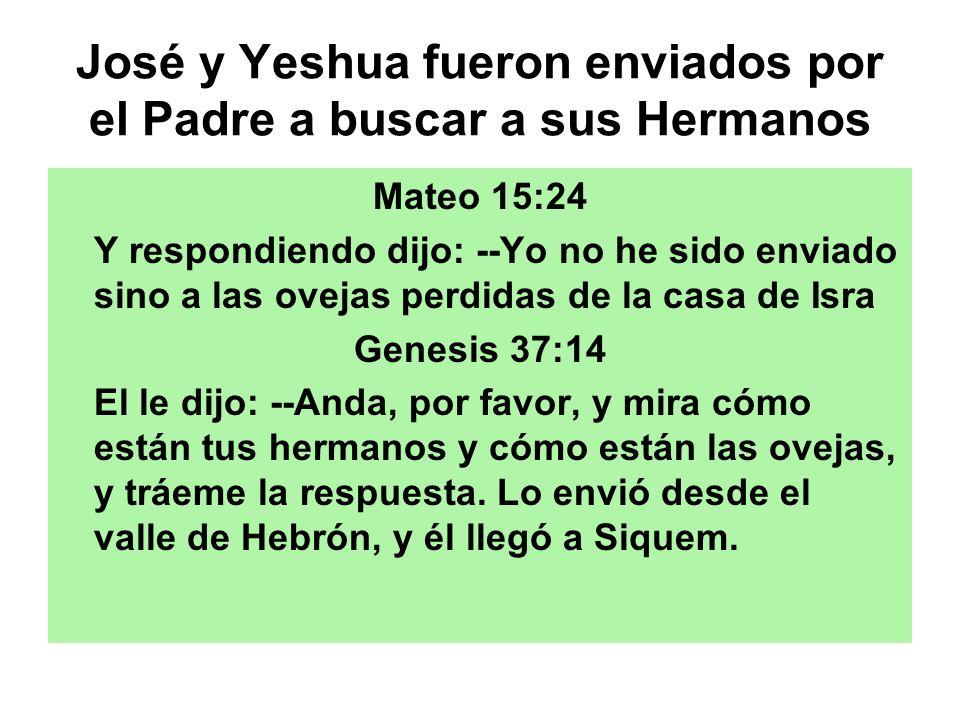 José y Yeshua fueron enviados por el Padre a buscar a sus Hermanos Mateo 15:24 Y respondiendo dijo: --Yo no he sido enviado sino a las ovejas perdidas
