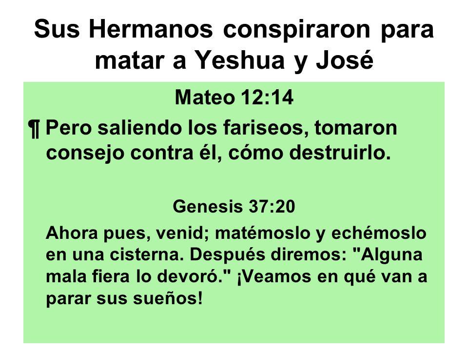 Sus Hermanos conspiraron para matar a Yeshua y José Mateo 12:14 ¶ Pero saliendo los fariseos, tomaron consejo contra él, cómo destruirlo. Genesis 37:2