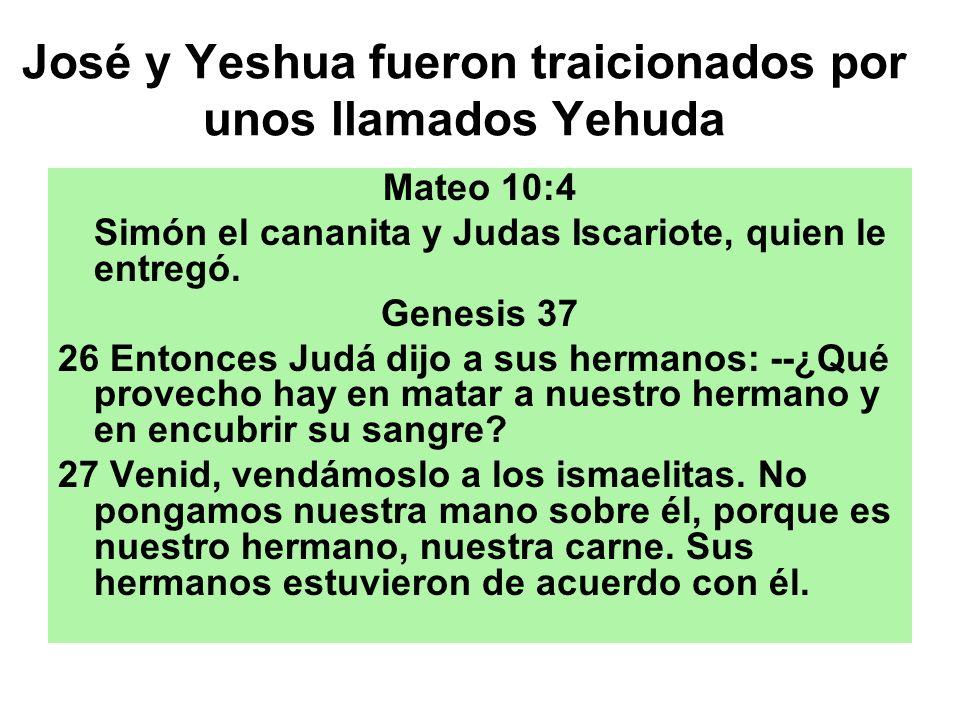 José y Yeshua fueron traicionados por unos llamados Yehuda Mateo 10:4 Simón el cananita y Judas Iscariote, quien le entregó. Genesis 37 26 Entonces Ju