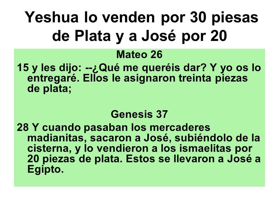 Yeshua lo venden por 30 piesas de Plata y a José por 20 Mateo 26 15 y les dijo: --¿Qué me queréis dar? Y yo os lo entregaré. Ellos le asignaron treint