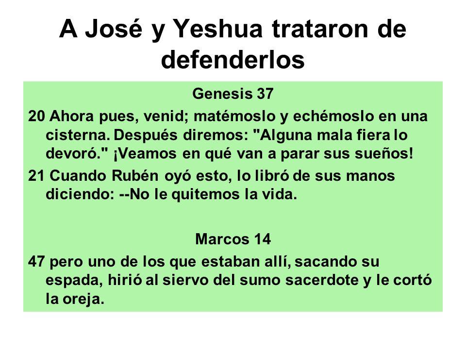 A José y Yeshua trataron de defenderlos Genesis 37 20 Ahora pues, venid; matémoslo y echémoslo en una cisterna. Después diremos:
