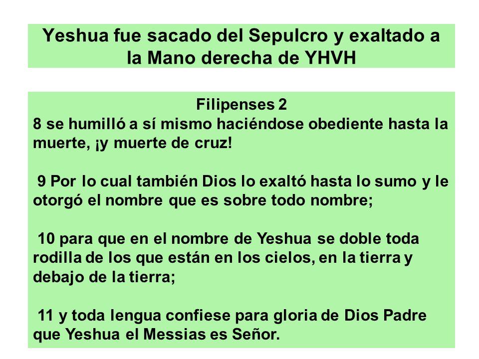 Yeshua fue sacado del Sepulcro y exaltado a la Mano derecha de YHVH Filipenses 2 8 se humilló a sí mismo haciéndose obediente hasta la muerte, ¡y muer