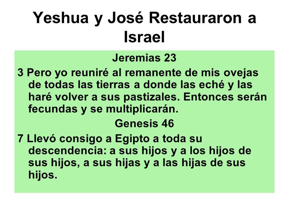 Yeshua y José Restauraron a Israel Jeremias 23 3 Pero yo reuniré al remanente de mis ovejas de todas las tierras a donde las eché y las haré volver a
