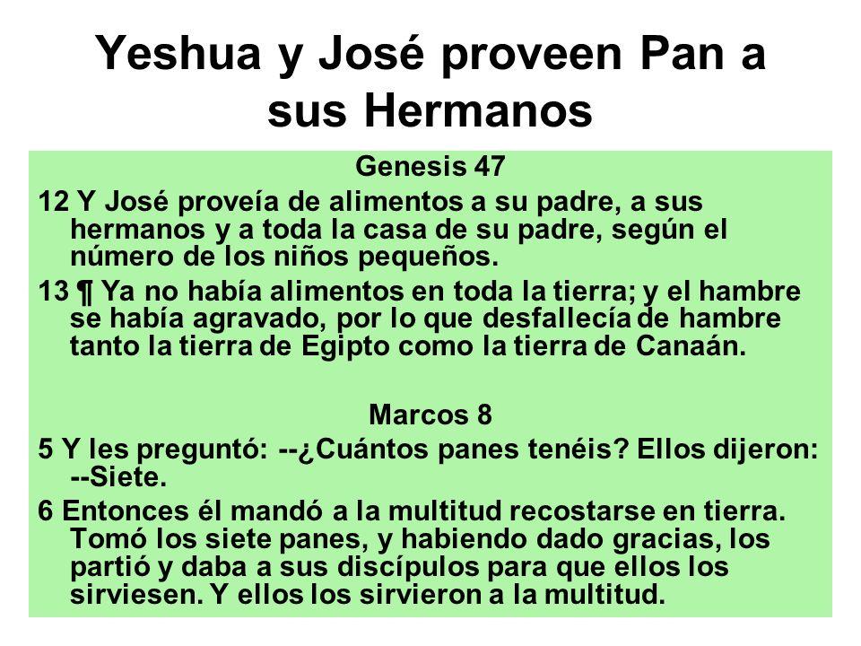 Yeshua y José proveen Pan a sus Hermanos Genesis 47 12 Y José proveía de alimentos a su padre, a sus hermanos y a toda la casa de su padre, según el n