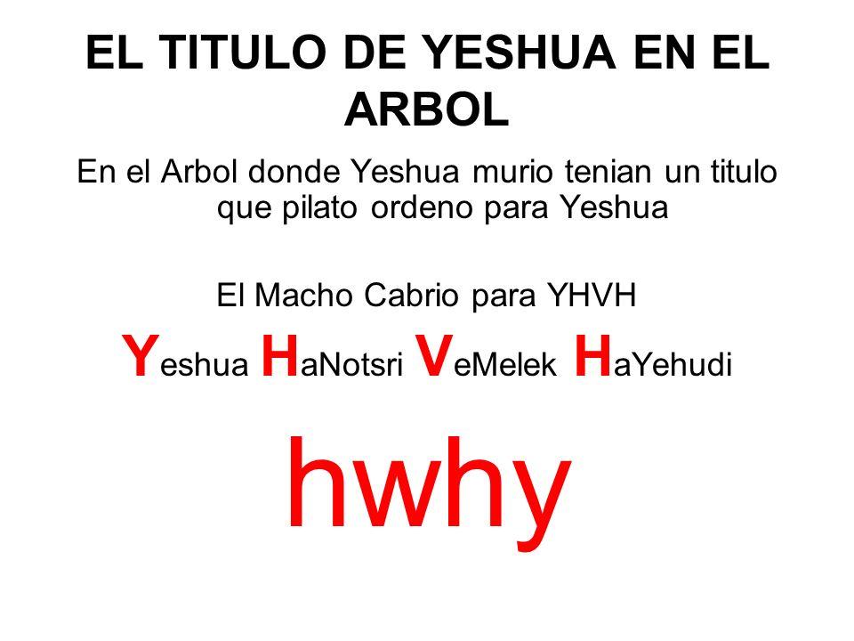 EL TITULO DE YESHUA EN EL ARBOL En el Arbol donde Yeshua murio tenian un titulo que pilato ordeno para Yeshua El Macho Cabrio para YHVH Y eshua H aNot