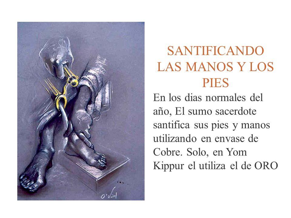 SANTIFICANDO LAS MANOS Y LOS PIES En los dias normales del año, El sumo sacerdote santifica sus pies y manos utilizando en envase de Cobre. Solo, en Y