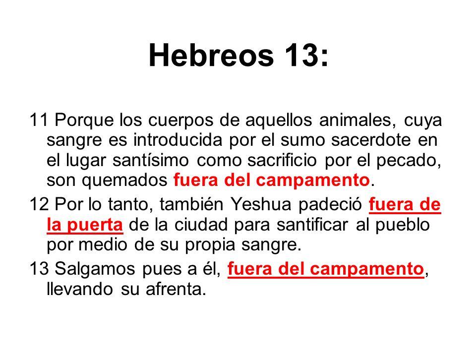 Hebreos 13: 11 Porque los cuerpos de aquellos animales, cuya sangre es introducida por el sumo sacerdote en el lugar santísimo como sacrificio por el