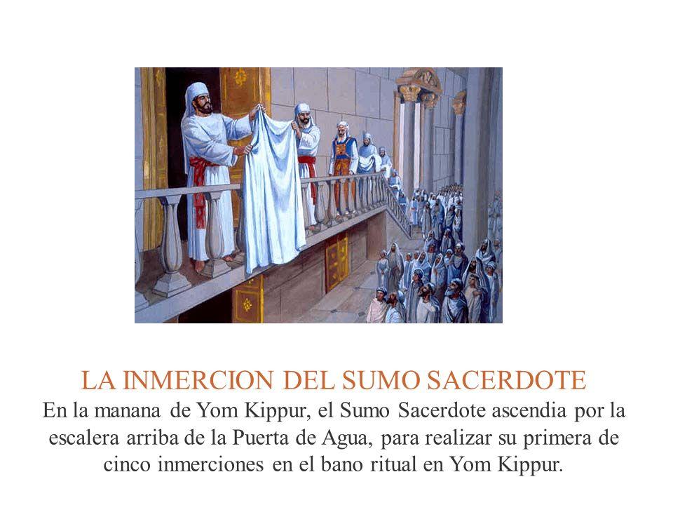 LA INMERCION DEL SUMO SACERDOTE En la manana de Yom Kippur, el Sumo Sacerdote ascendia por la escalera arriba de la Puerta de Agua, para realizar su p