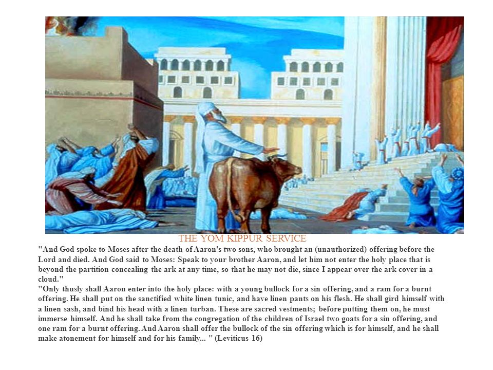 SPRINKLING THE BLOOD OF THE BULLOCK There, he sprinkles in the air with his finger from the contents of the mizrak, towards the spot of the ark-cover.