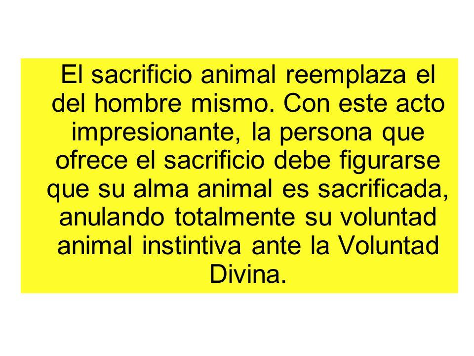 El sacrificio animal reemplaza el del hombre mismo. Con este acto impresionante, la persona que ofrece el sacrificio debe figurarse que su alma animal