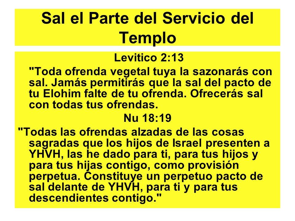 Sal el Parte del Servicio del Templo Levitico 2:13 Toda ofrenda vegetal tuya la sazonarás con sal.