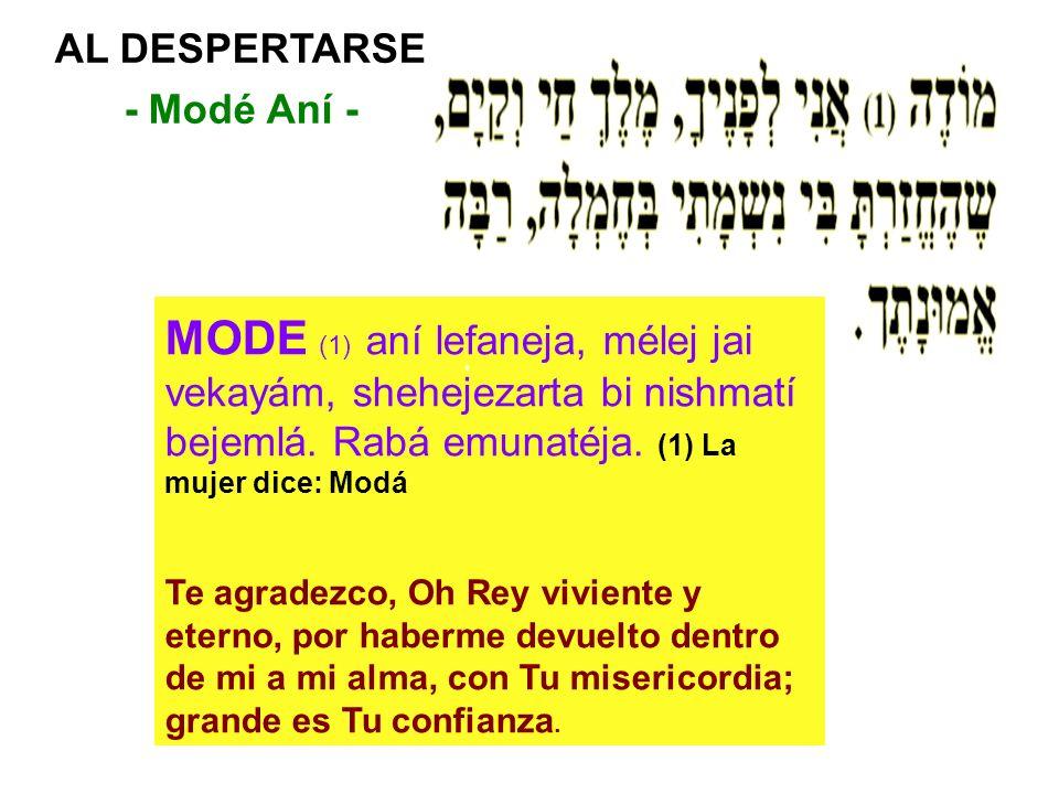AL DESPERTARSE - Modé Aní - MODE (1) aní lefaneja, mélej jai vekayám, shehejezarta bi nishmatí bejemlá. Rabá emunatéja. (1) La mujer dice: Modá Te agr