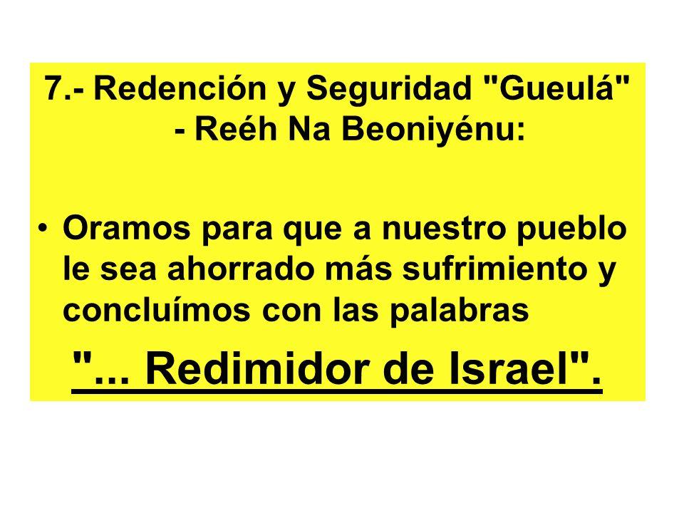 7.- Redención y Seguridad Gueulá - Reéh Na Beoniyénu: Oramos para que a nuestro pueblo le sea ahorrado más sufrimiento y concluímos con las palabras ...