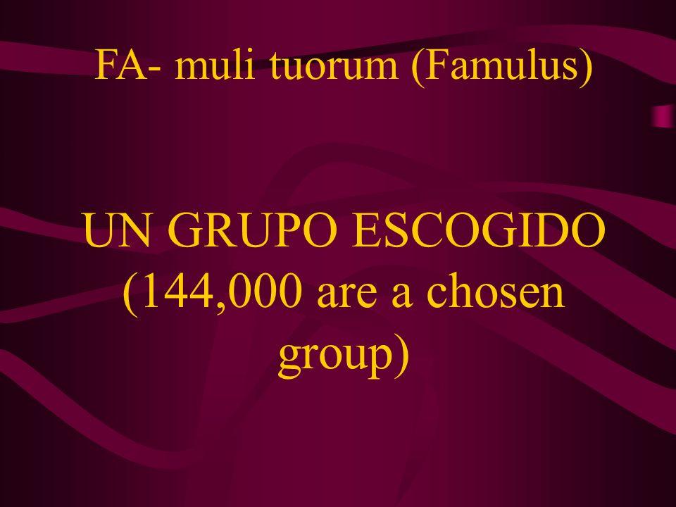 FA- muli tuorum (Famulus) UN GRUPO ESCOGIDO (144,000 are a chosen group)