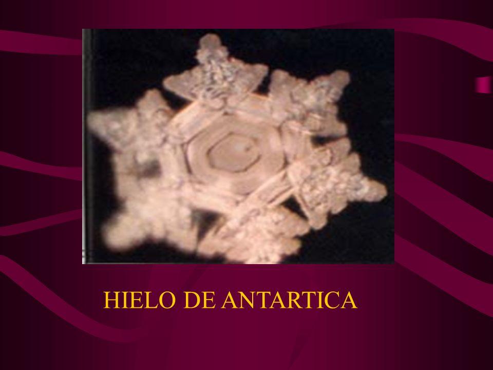 HIELO DE ANTARTICA