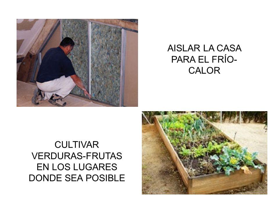 AISLAR LA CASA PARA EL FRÍO- CALOR CULTIVAR VERDURAS-FRUTAS EN LOS LUGARES DONDE SEA POSIBLE
