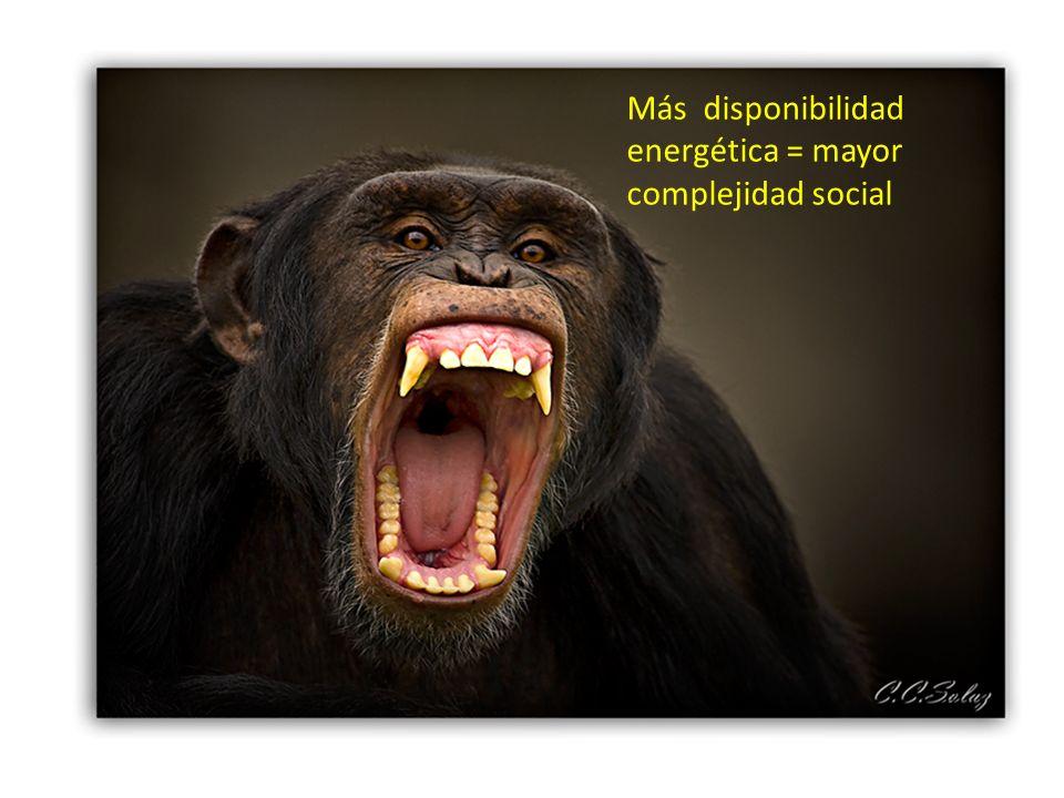 Más disponibilidad energética = mayor complejidad social