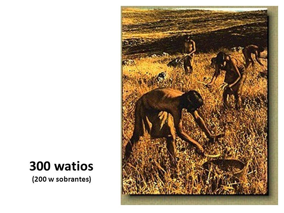 300 watios (200 w sobrantes)