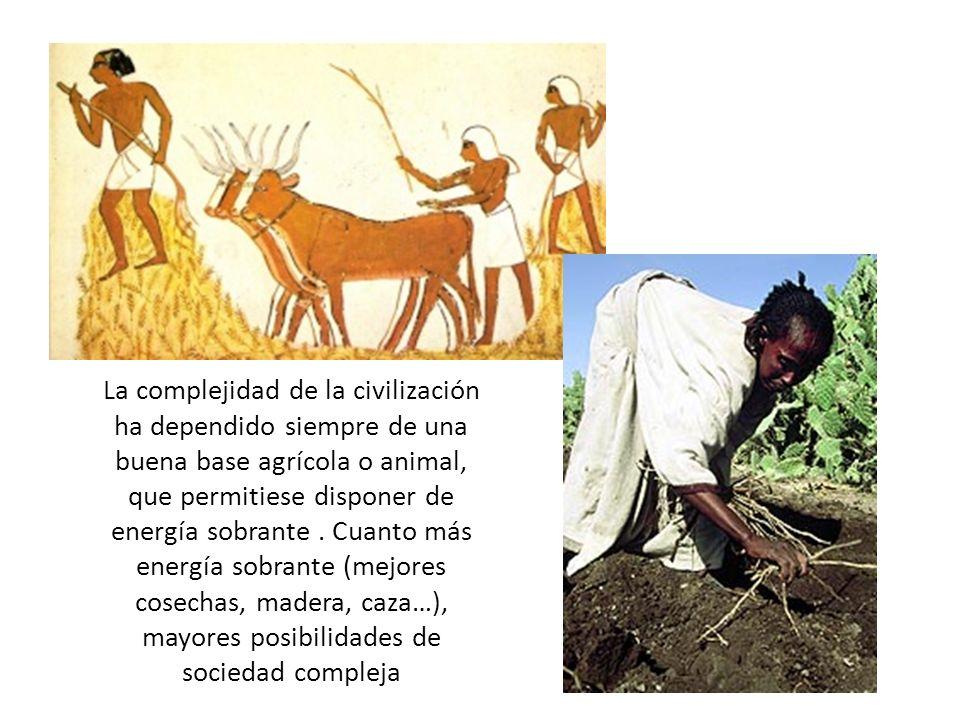 La complejidad de la civilización ha dependido siempre de una buena base agrícola o animal, que permitiese disponer de energía sobrante.
