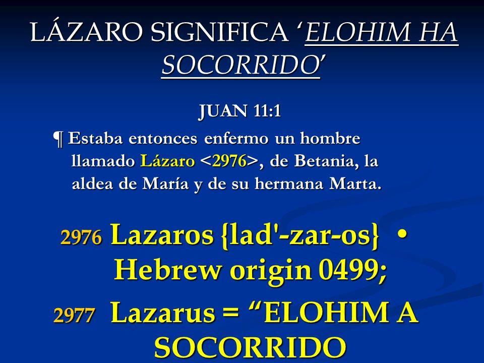 LA RAIZ DEL NOMBRE DE LAZARO SIGNIFICAELEAZAR 1CRONICAS 6:3 Los hijos de Amram fueron: Aarón, Moisés y María.