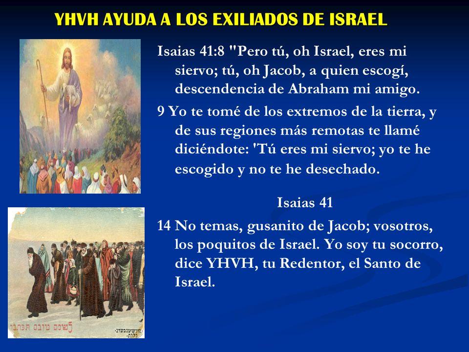 Isaias 44 1 ¶ Y ahora escucha, oh Jacob, siervo mío; y tú, oh Israel, a quien yo escogí.