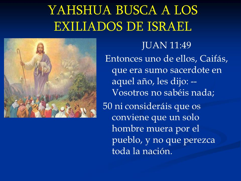 YAHSHUA BUSCA A LOS EXILIADOS DE ISRAEL JUAN 11:49 Entonces uno de ellos, Caifás, que era sumo sacerdote en aquel año, les dijo: -- Vosotros no sabéis