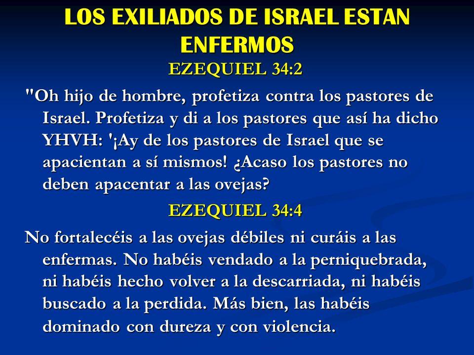 Ezequiel 34:11 Ciertamente así ha dicho el Señor : He aquí, yo mismo buscaré mis ovejas y cuidaré de ellas.