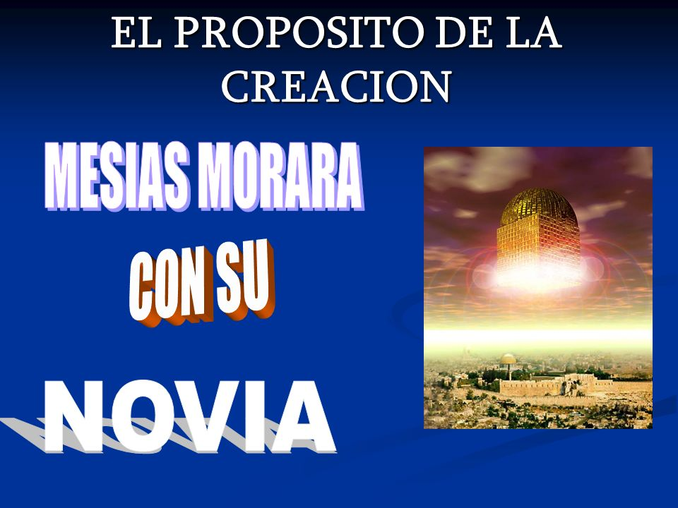 EL PROPOSITO DE LA CREACION