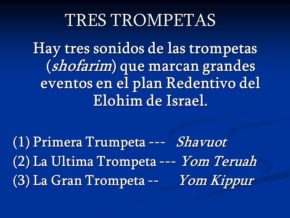 TRES TROMPETAS Hay tres sonidos de las trompetas (shofarim) que marcan grandes eventos en el plan Redentivo del Elohim de Israel. (1) Primera Trumpeta