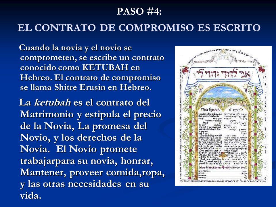 PASO #4: EL CONTRATO DE COMPROMISO ES ESCRITO Cuando la novia y el novio se comprometen, se escribe un contrato conocido como KETUBAH en Hebreo. El co