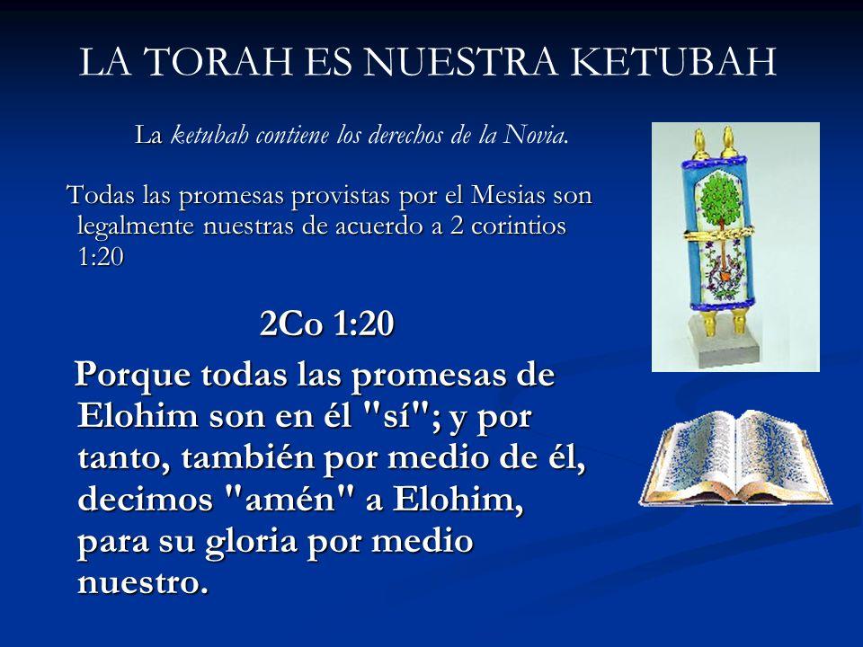 LA TORAH ES NUESTRA KETUBAH La La ketubah contiene los derechos de la Novia. Todas las promesas provistas por el Mesias son legalmente nuestras de acu