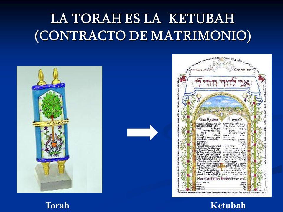 LA DADIVA DE LA VIDA ETERNA OTRO DON EL LA VIDA ETERNA ROMANOS 6:23 Porque la paga del pecado es muerte; pero el don de Elohim es vida eterna en Yahshua el Mesias, Señor nuestro.