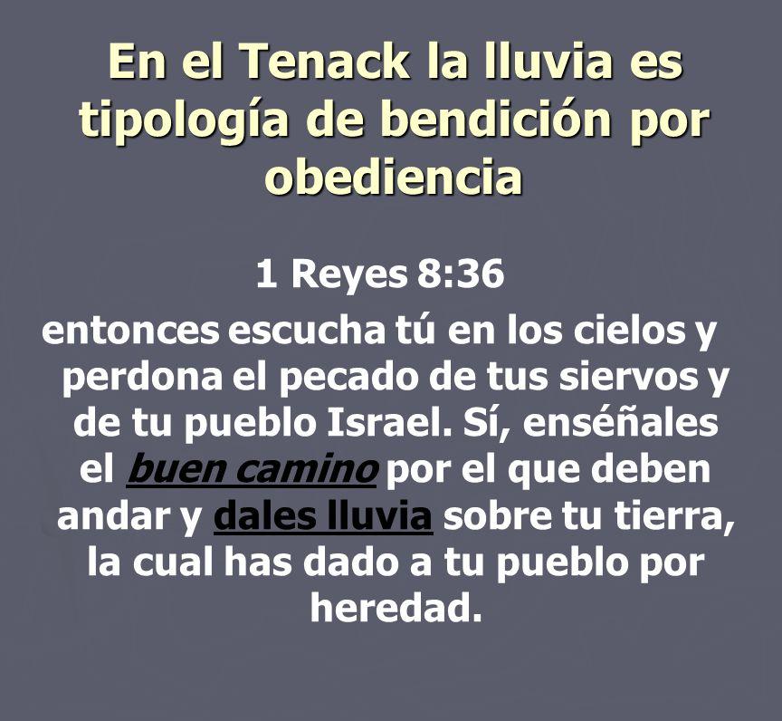 En el Tenack la lluvia es tipología de bendición por obediencia 1 Reyes 8:36 entonces escucha tú en los cielos y perdona el pecado de tus siervos y de