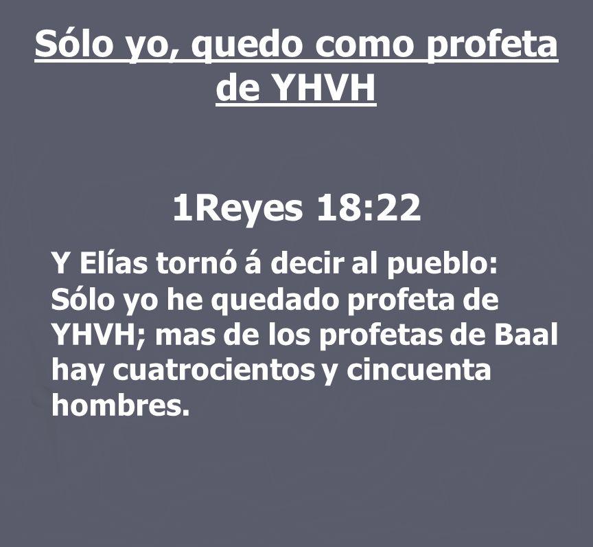Sólo yo, quedo como profeta de YHVH 1Reyes 18:22 Y Elías tornó á decir al pueblo: Sólo yo he quedado profeta de YHVH; mas de los profetas de Baal hay