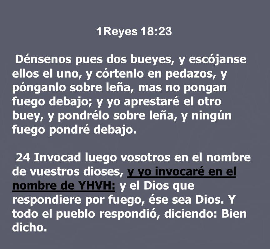 1Reyes 18:23 Dénsenos pues dos bueyes, y escójanse ellos el uno, y córtenlo en pedazos, y pónganlo sobre leña, mas no pongan fuego debajo; y yo aprest