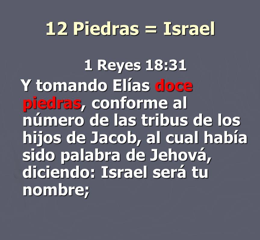 12 Piedras = Israel 1 Reyes 18:31 Y tomando Elías doce piedras, conforme al número de las tribus de los hijos de Jacob, al cual había sido palabra de