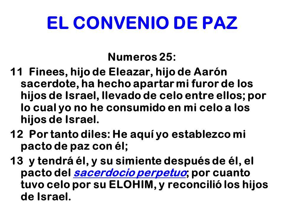 EL CONVENIO DE PAZ Numeros 25: 11 Finees, hijo de Eleazar, hijo de Aarón sacerdote, ha hecho apartar mi furor de los hijos de Israel, llevado de celo